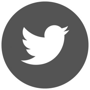twiiter-icon-grey